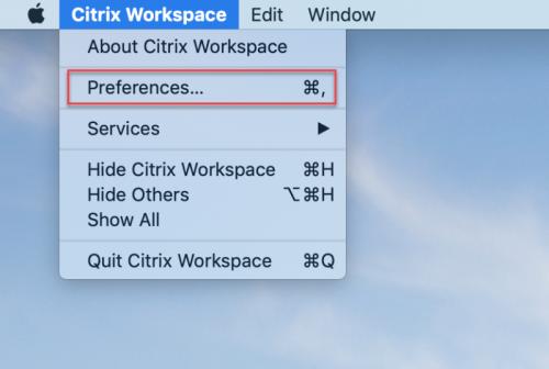 Citrix Workspace App, select Preferences